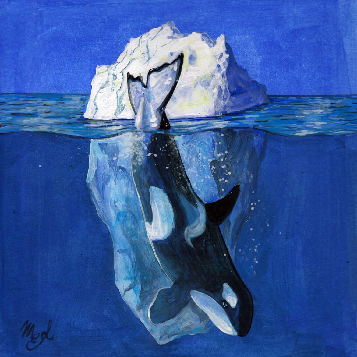 Painting of an orca diving into the water with a background of an iceberg.